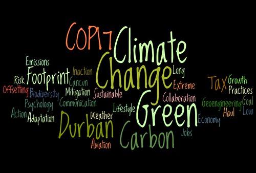 COP17 Wordle