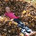 fall_leaves_20111106_21731