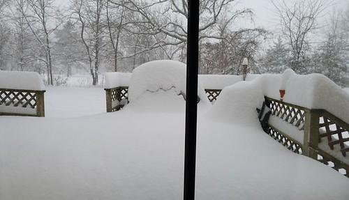 Snow Jan 2011