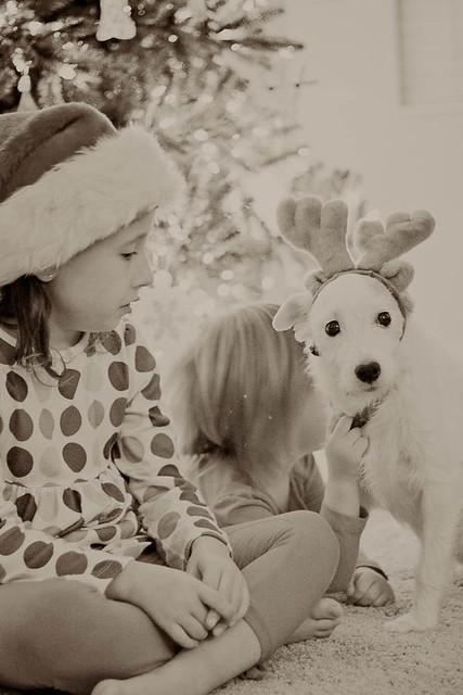 Dec_2011_0064-4