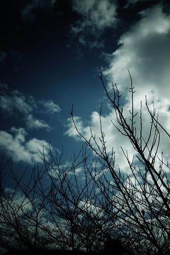 空を見上げる