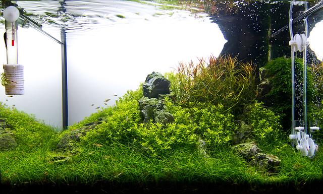 60L update 09/12/2011