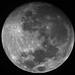 Moon 12/8/2011 by floppypaws