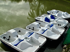 IMG_2204 Paddle boats