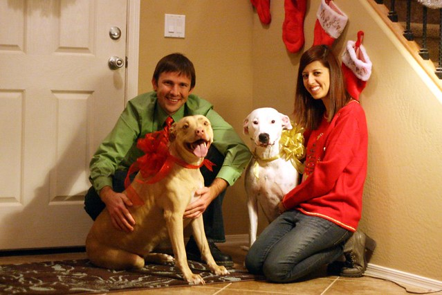 Chris & Alicia's Christmas Photo