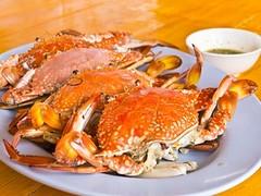 fresh crab compressed