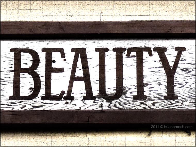 P1220265_beauty