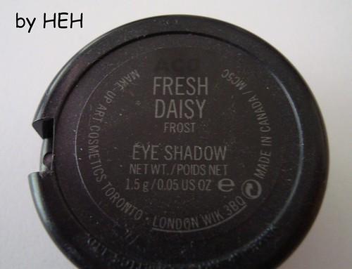 freshdaisy2