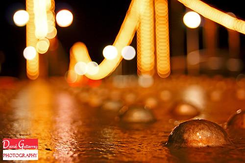 Happy New Year 2012 by david gutierrez [ www.davidgutierrez.co.uk ]
