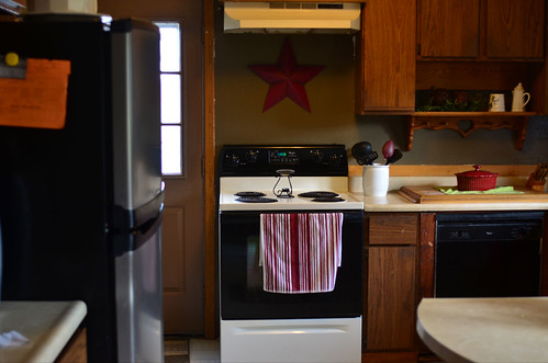 Don't Install Your Refrigerator Next to Your Dishwasher (25/365)