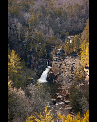 winter fall water leaves landscape golden nc northcarolina waterfalls gorge blueridgemountains blueridgeparkway linvillefalls erwinsview nikonafnikkor85mmf14d