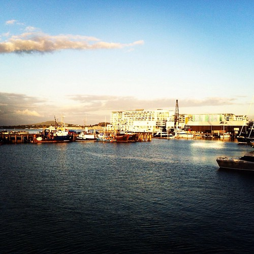 Auckland harbour and its Princes Wharf by Gypsy Saskia