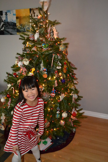 Misc. Christmas 031