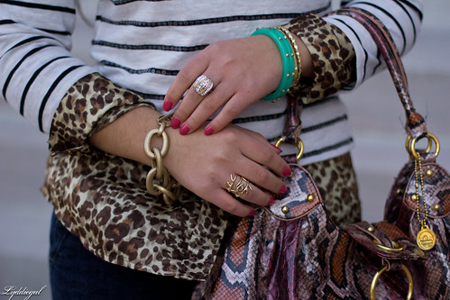 stripes over leopard-3.jpg