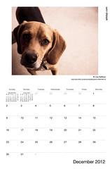 ADIDAP Calendar 2012 US December