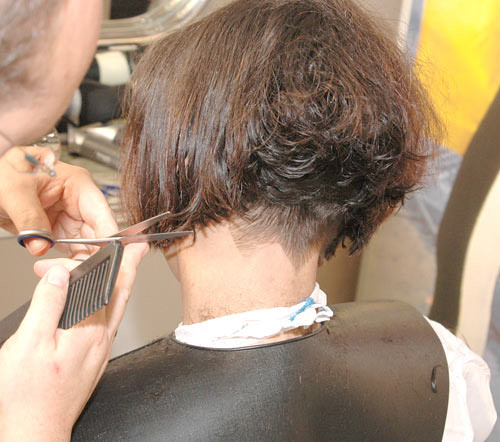 Short Haircuts Clippered Nape Women