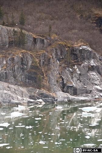 20110505-Alaska2011-D2-DSC_5234-2.jpg