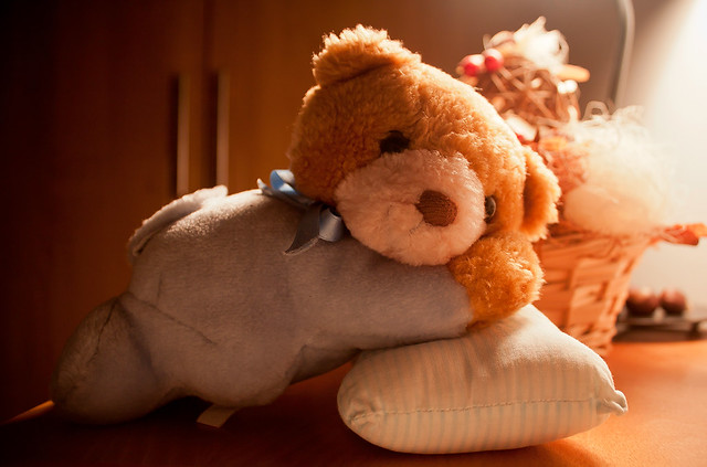 Story of Joca The Teddy Bear
