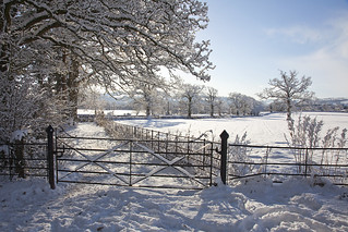 snow picture | by Devon County Council