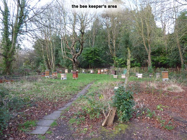 highbury-park-bee-keepers-area