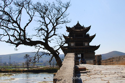 tree and Twin Dragon Bridge Jianshui Yunnan China