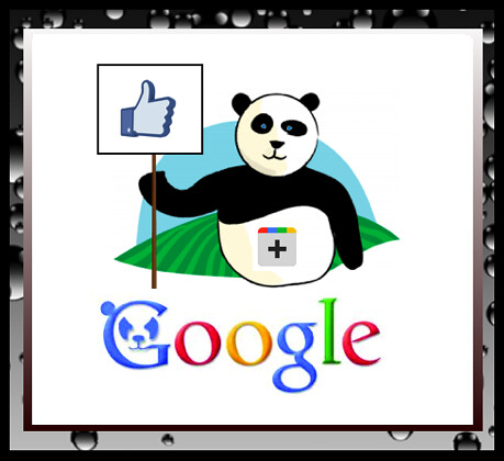 like Google Plus