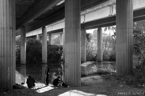 Pescando en el río de las Cañas © by Bakalito (Antonio Benítez Paz)