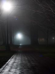 112: #105 - Fog, Mist or Smoke