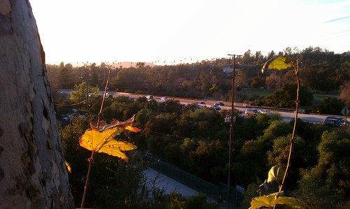Looking south from lookout point in South Pasadena on Arroyo Drive