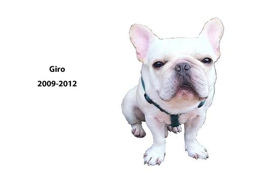 RIP_GIRO
