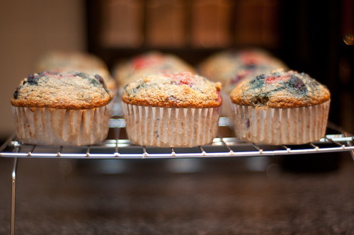 triple berry muffin