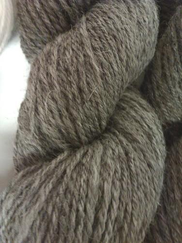 Shetland 4 grey 1