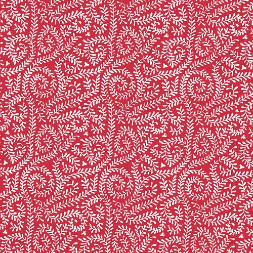 1 pomegranate VINE melstampz