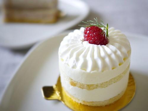 "cake ""midi"""