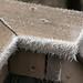 20120204 Hoar Frost 6