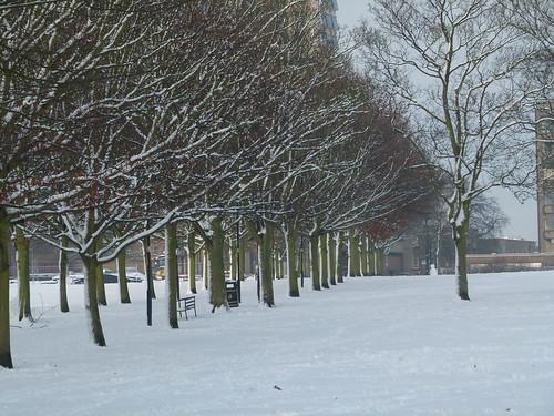 Snow Day 05.02.2012
