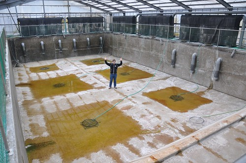 The author of this blog in an empty 500 ton (500.000 liter!) concrete pond