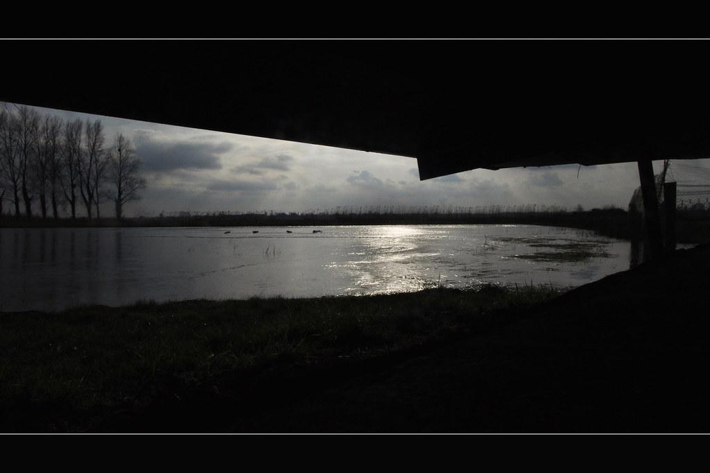 Fenêtre de tir - Gabion du marais de Rougeval (3433)