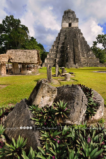 Mayan Rock Garden