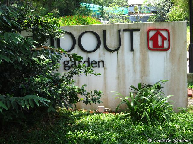 Ridout Tea Garden 01