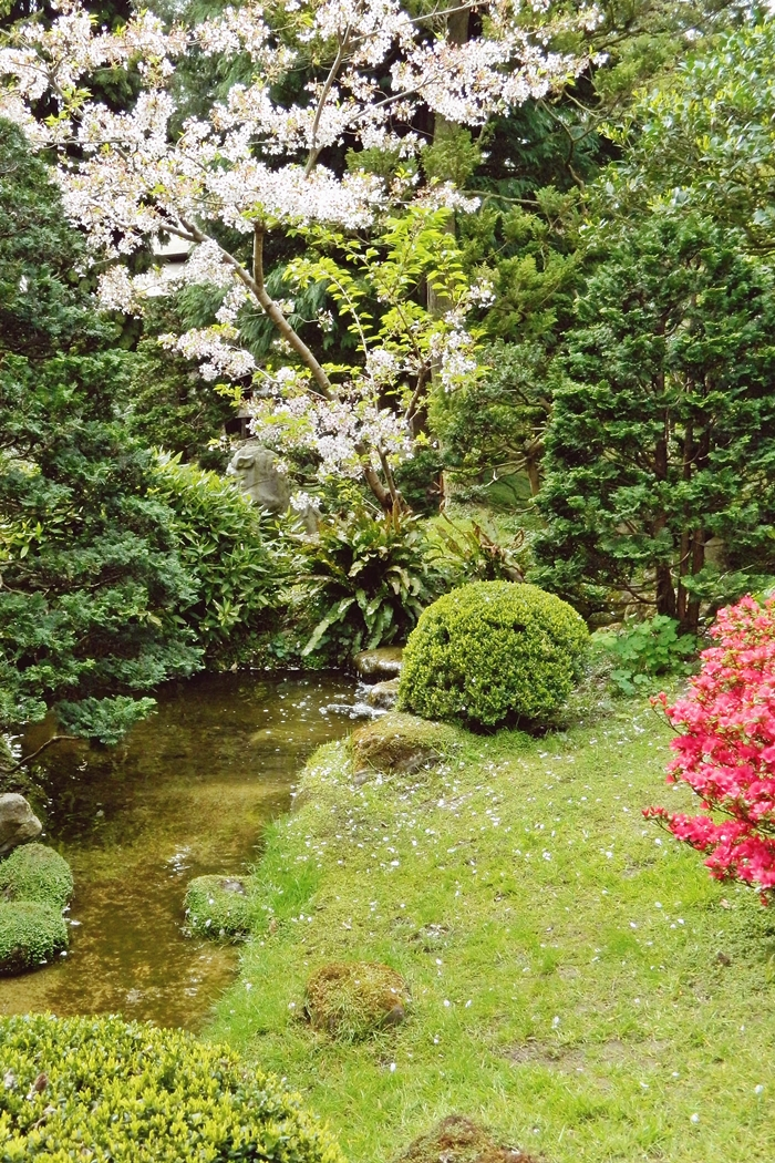 Jardin japonais Albert Kahn (16)