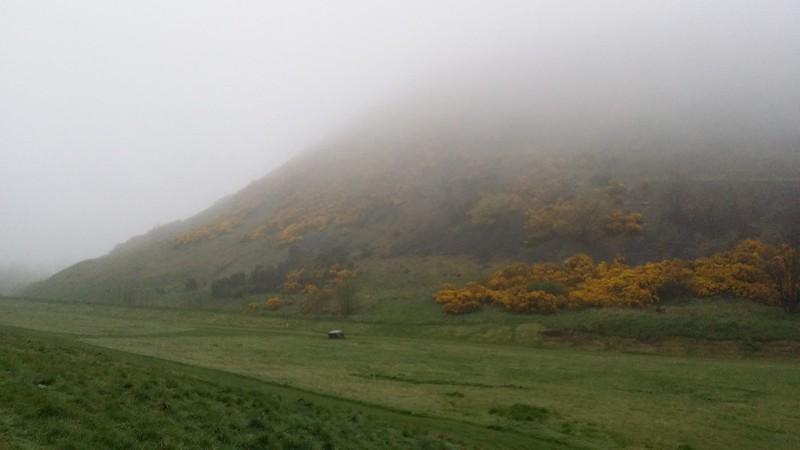 Misty Holyrood Park #sh