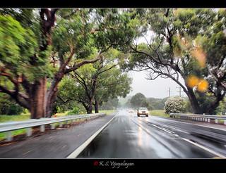 Maroondah highway