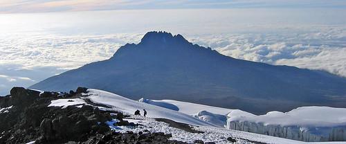 paka_kilimanjaro5