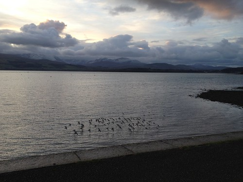 The shore at Beaumaris