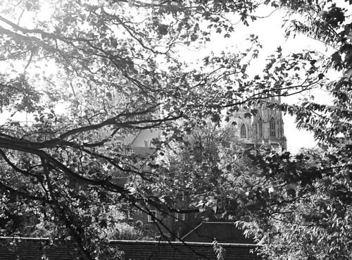 2011-10-18 [20] York
