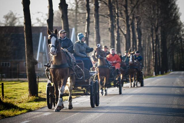 20111218 Winterrit HHR