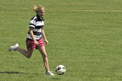 football player, ball, soccer kick, kick, grass, sports, team sport, player, football, ball game, women's football, ball,