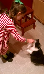 Gracie hand-feeding treats to Josie