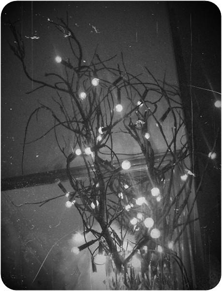 winter 014